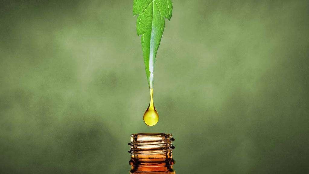 CBD Oil vs Hemp Oil