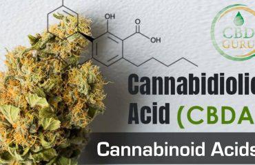 Cannabinoid Acids