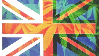 Rethinking Cannabis In The UK